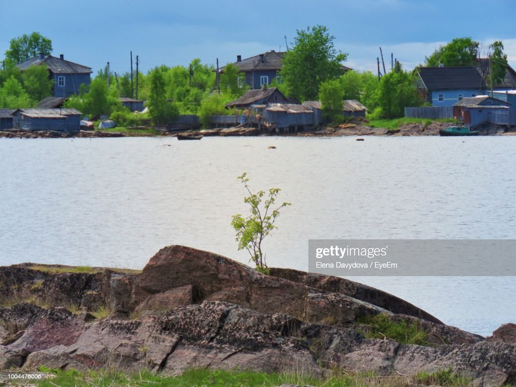 Plants Growing On Rock By Building Against Sky Stock Photo