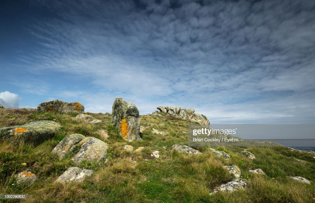 plants growing on rocks by sea against sky ストックフォト getty images