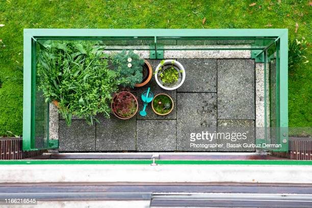 plants in a balcony - basak gurbuz derman stock photos and pictures