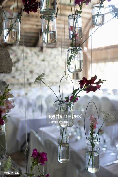 Plants in hanging jars