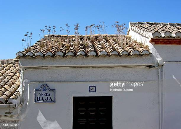 Plants on a roof in tile, typical house of the old Albaicín district in Granada, Spain