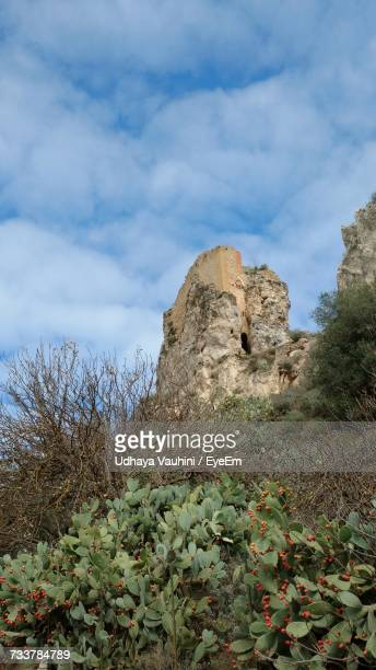 plants on landscape against sky - province of caltanissetta stock photos and pictures