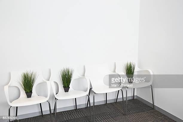 Pflanzen auf das moderne Büro Stühlen