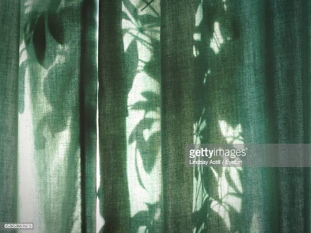 plants seen through green curtain - translucent stock pictures, royalty-free photos & images