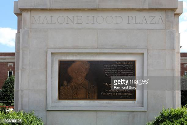 A plaque honoring Autherine Lucy the first AfricanAmerican to enroll at the University of Alabama following successful litigation under the historic...