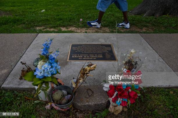 A plaque in memory of slain teenager Mike Brown is embedded in the sidewalk near the Canfield Apartments where Mike Brown killed on Tuesday May 29 in...