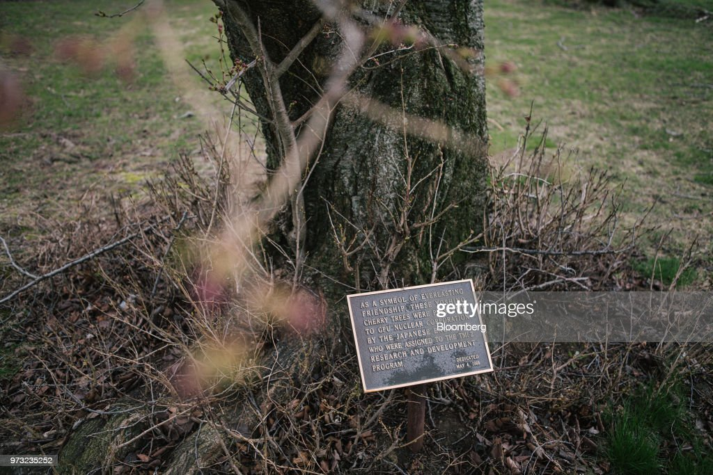 A plaque sits below a cherry tree gifted by Japanese engineers assigned to the Exelon Corp. Three Mile Island nuclear power plant in Middletown, Pennsylvania, U.S., on Wednesday, April 11, 2018. On Sept. 30, Exelon Corp. plans to take Three Mile Island offline because it is no longer profitable. Across the U.S., Nuclear plants are having trouble staying competitive in an era of cheap natural gas, a product of the shale boom. Photographer: Michelle Gustafson/Bloomberg via Getty Images