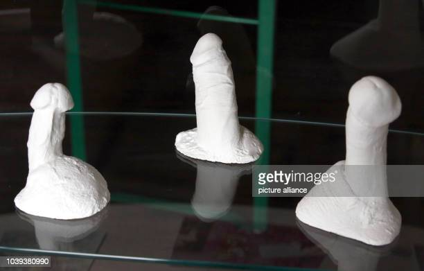 Plaster moulds of the penises of Danny Doll Rod, Jake Shillingford and David Yow are on show at the 'Penis Dimension' exhibition in Bad Doberan,...