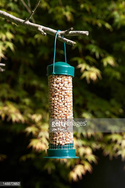 Plastic and wire bird feed holder in a garden