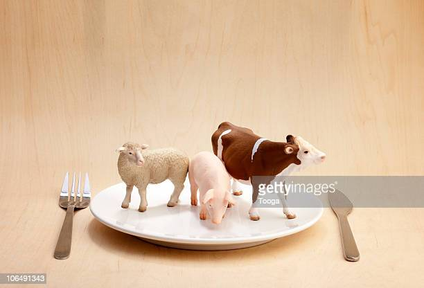 plastic animals on dinner plate - plastic plate stock pictures, royalty-free photos & images