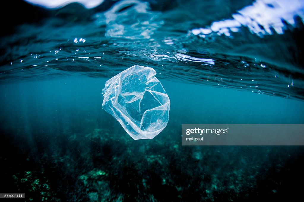 Plastic bag floating over reef in the ocean, Costa Rica : Stock Photo