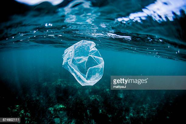 plastic bag floating over reef in the ocean, costa rica - plastic stockfoto's en -beelden