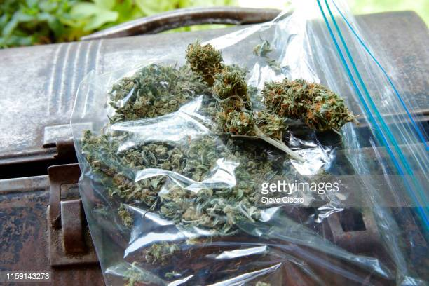 plastic bag of assortment of marijuana on lunch box - image stock-fotos und bilder