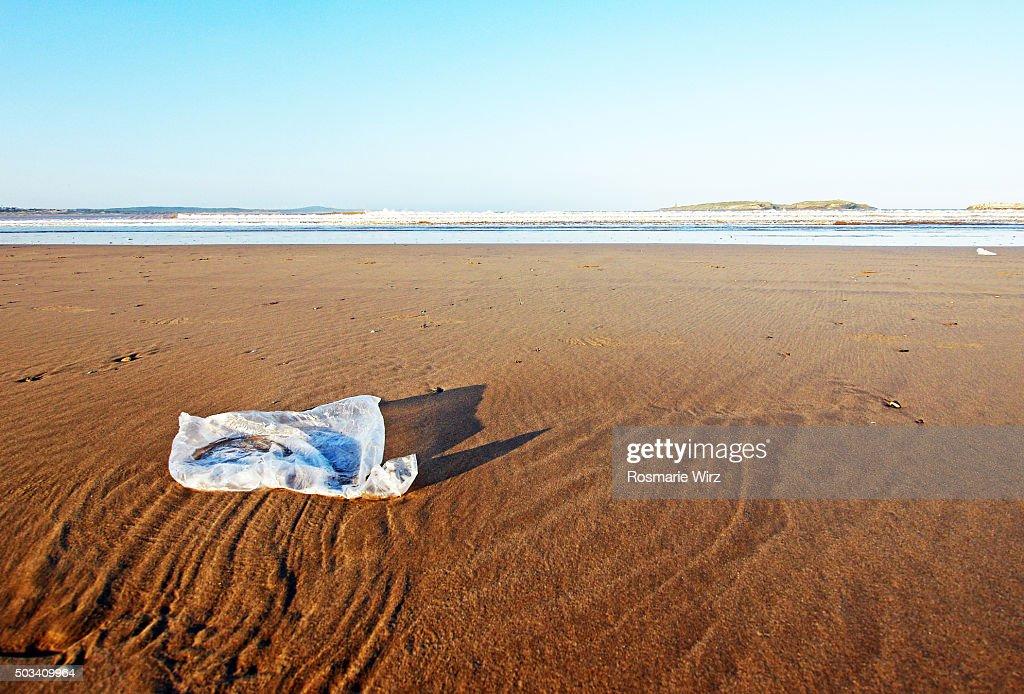 Plastic bag on beach : Stock Photo