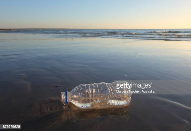 plastic bottle on beach - plastic stockfoto's en -beelden