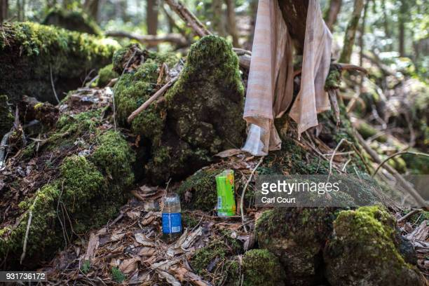 Plastic bottles believed to have been used to hold flowers remain at the scene of an apparent suicide in Aokigahara forest on March 13 2018 in...
