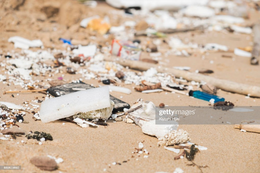 Plastic container on beach : Stock Photo