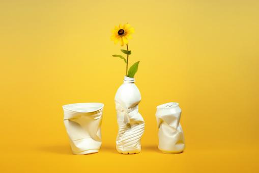 Plastic containers repurposed as vases - gettyimageskorea