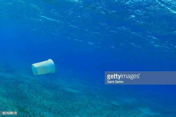 Plastic cup in the sea, Red Sea, Egypt