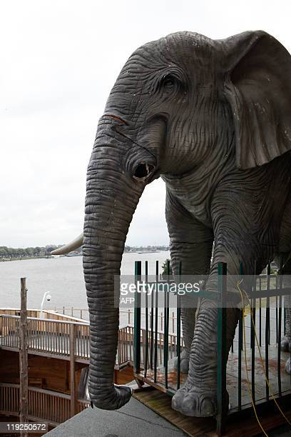 A plastic elephant is seen on the 150 metrelong Noah's ark created by Dutch Johan Huibers at an old abandoned quay on the Merwede River in Dordrecht...