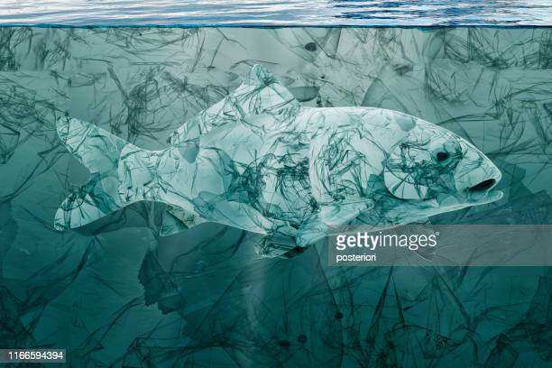 plastic fish, pollution that floats in the ocean - environmental damage stock pictures, royalty-free photos & images