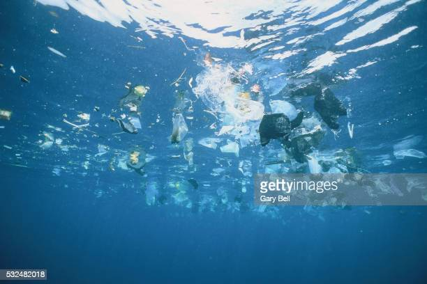 Plastic garbage is swimming on rhe water surface