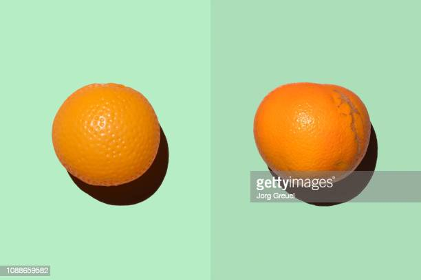 plastic orange beside real orange - imperfection stock pictures, royalty-free photos & images