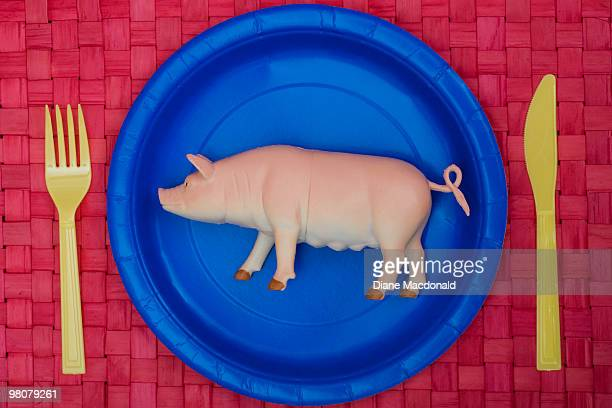 A plastic pig on a plate