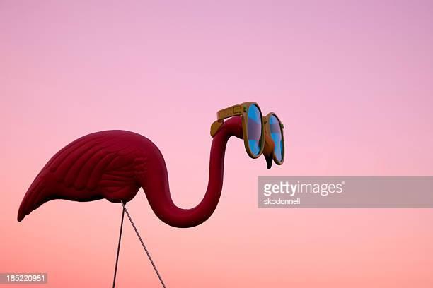 kunststoff pink flamingo auf einer wiese bei sonnenuntergang - florida usa stock-fotos und bilder