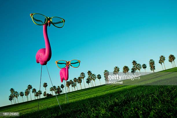 Plastic Pink Flamingos on a Green Lawn
