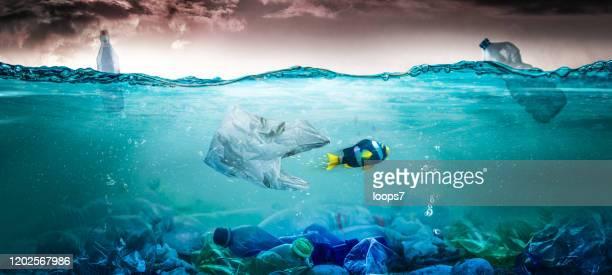 プラスチック汚染の概念 - プラスチック汚染 ストックフォトと画像