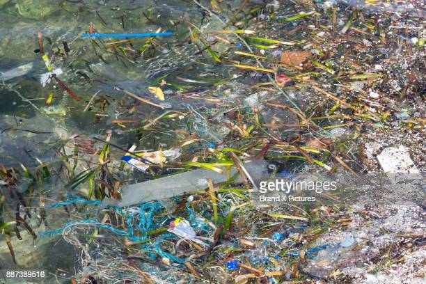 plastic pollution in the ocean - deterioration stock photos and pictures
