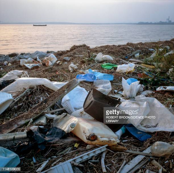 plastic rubbish on shore - water pollution stock pictures, royalty-free photos & images