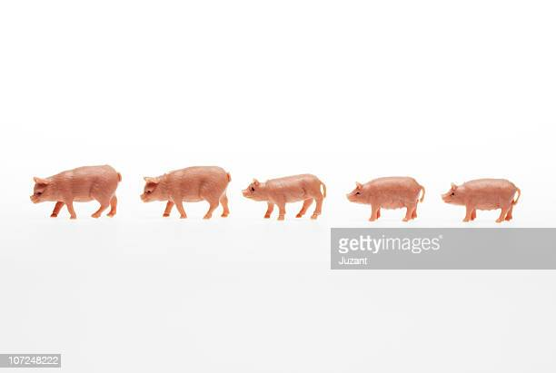 plastic toy pigs in a row - toy animal stock photos and pictures