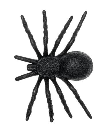 Plastic toy spider 626216806