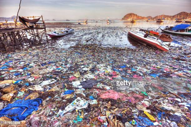Plastic trash pollution on beach of Labuan Bajo . It is sad to see that in that small fishing town which is the gateway to the Komodo Islands, a...