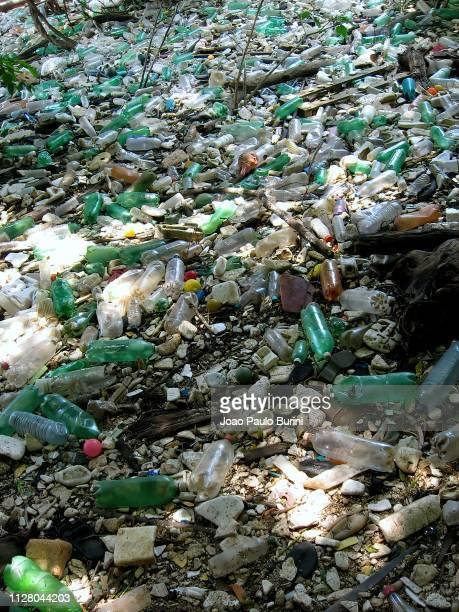 plastic trash washed ashore a river - poluição fotografías e imágenes de stock