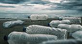Plastic water bottles pollution in ocean (Environment concept)