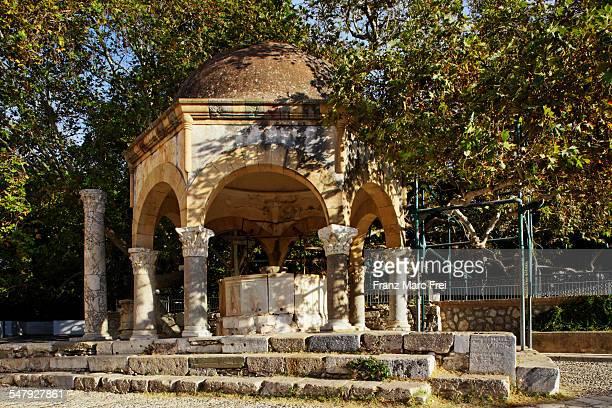 Platane of Hippokrates, Kos Town