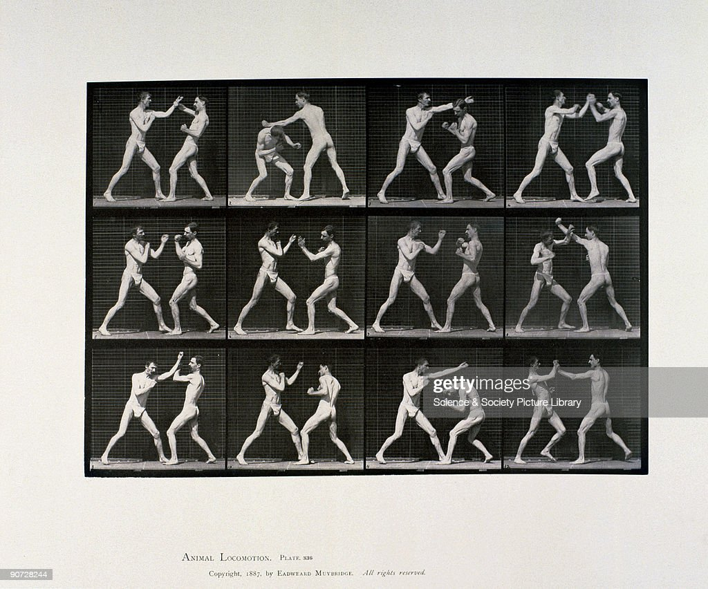 Plate 336 from Muybridge's 'Animal Locomotion' (1887). Eadweard Muybridge (1830-1904) was the first photographer to carry out the analysis of movement by sequence photography, an important stage in the invention of cinematography.