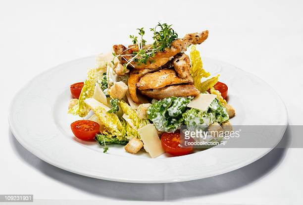 Plate of chicken fillet with lettuce, close-up