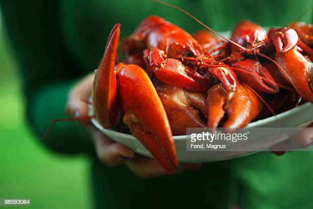 A plate of crayfish, Sweden.