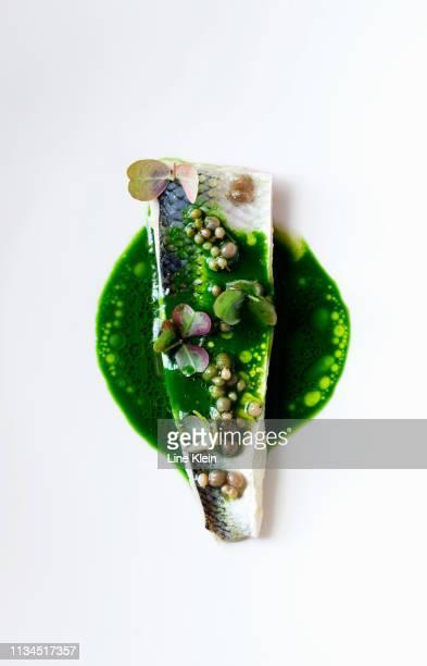 plate of fish with herbs and sauce - gourmet eten stockfoto's en -beelden