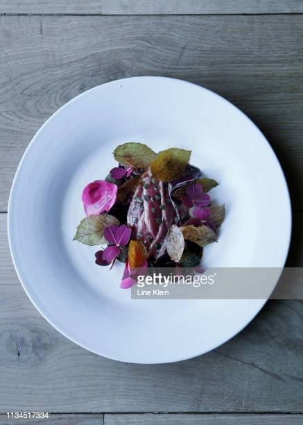 plate of fish with herbs - klein foto e immagini stock
