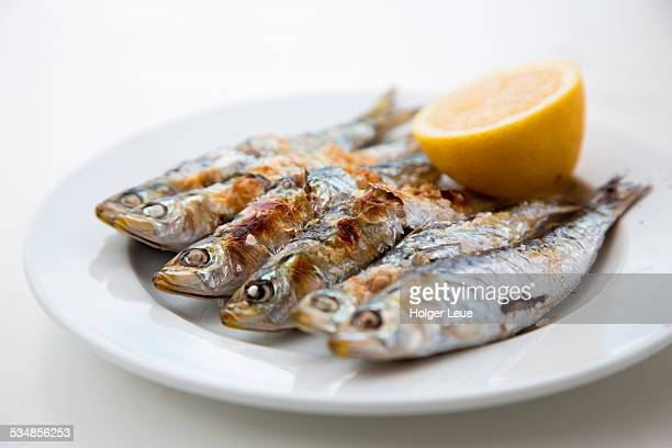 Plate of grilled sardines at beach restaurant