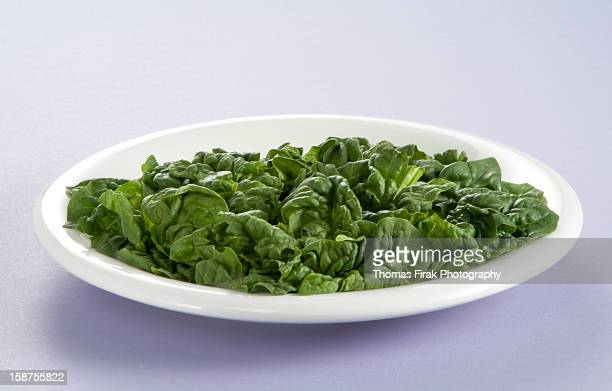 plate of leaf spinach -  firak stock pictures, royalty-free photos & images