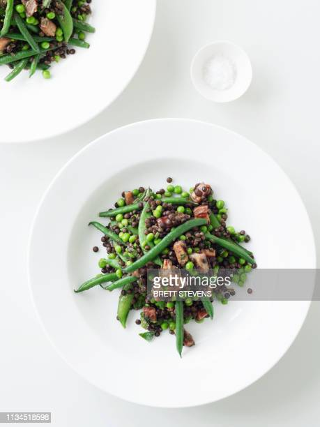 plate of lentil and green bean salad - lentil stock pictures, royalty-free photos & images