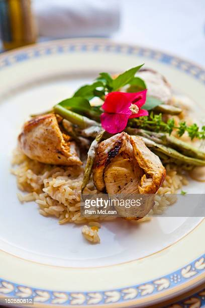 plate of mayan food with chicken and rice - yucatan stock pictures, royalty-free photos & images