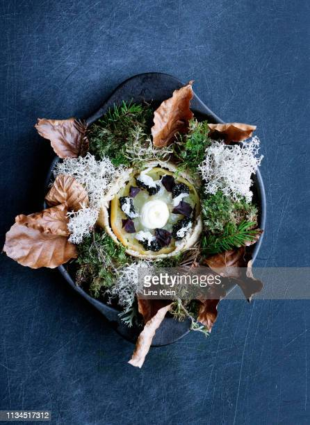 plate of mushroom with salad - klein stock pictures, royalty-free photos & images