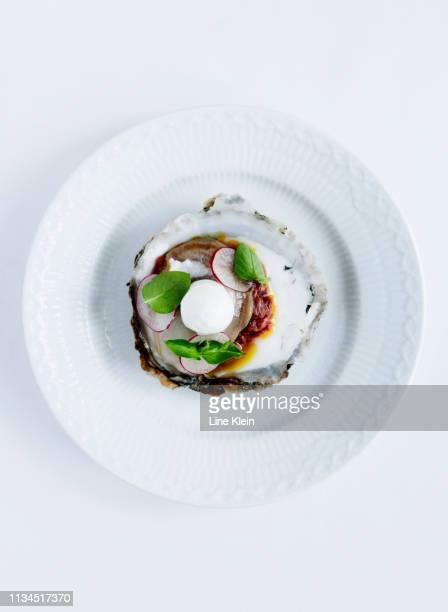 plate of oysters with radish and herbs - gourmet eten stockfoto's en -beelden